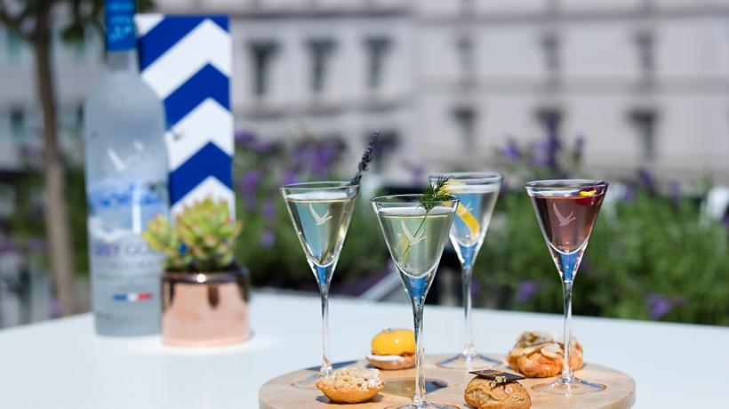 https://n.hng.io/uploads/2015/07/grey-goose-summer-martini-slider-four.jpg
