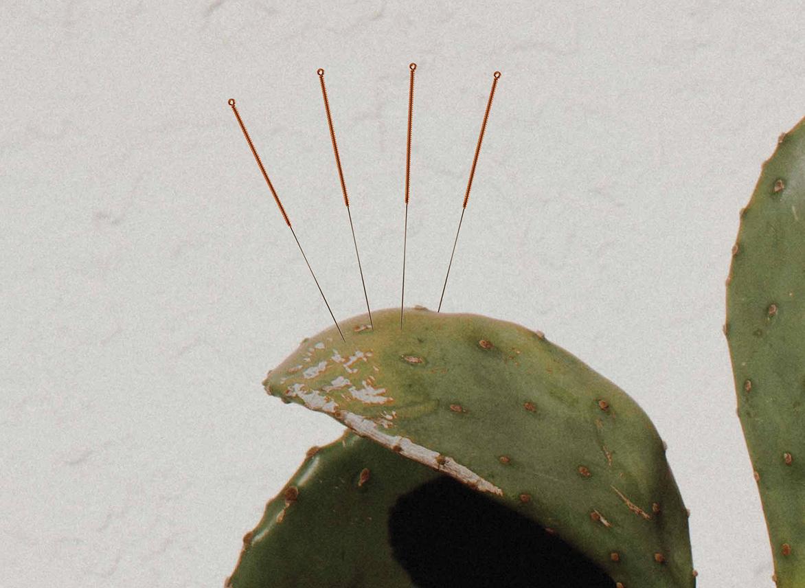 sarah bradden- acupuncture - harvey nichols